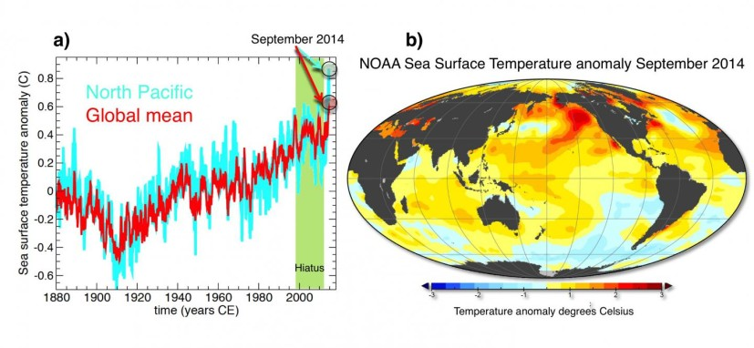 Global Ocean Temperatures (Axel Timmerman)