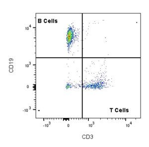 Flow Cytometry Going With the Flow