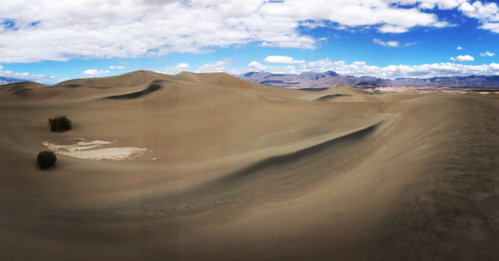 Berkeley, Mesquite Sand Dunes. Death Valley National Park.  Biota member daniela zarate (@witxhdoktor.phd)