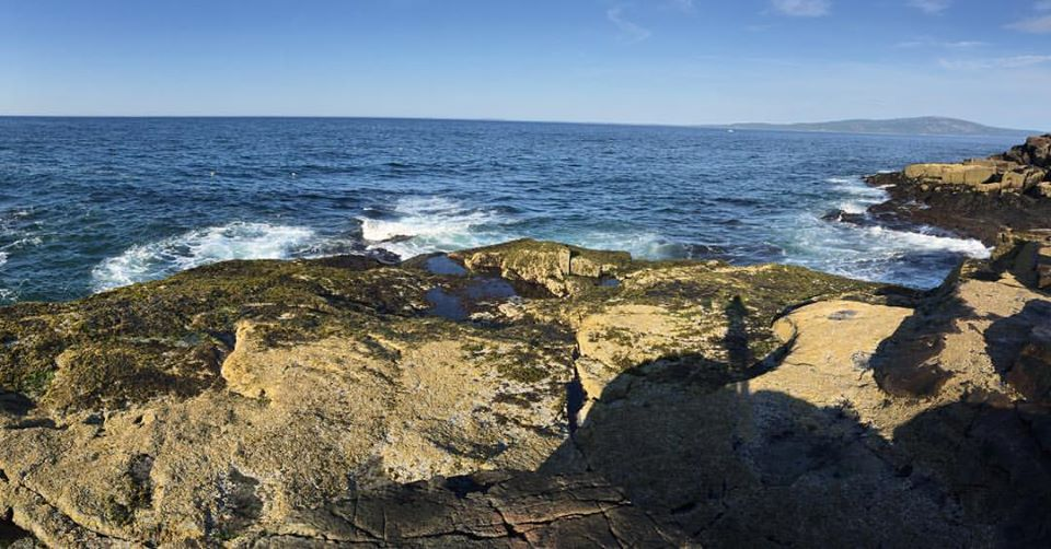 Rocky coastal intertidal of Maine, USA. Photo Credit to Helen Cheng.
