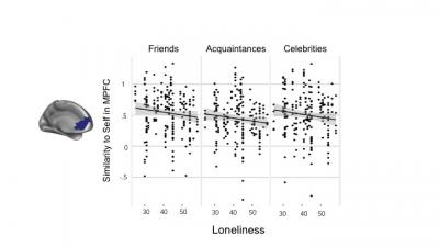 Loneliness was associated with lower self-other similarity in the medial prefrontal cortex (MPFC). Less self-other similarity in MPFC with greater loneliness was observed when participants thought about either their friends, acquaintances, or celebrities.